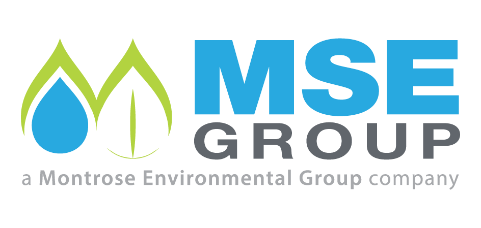 MSE Group, LLC